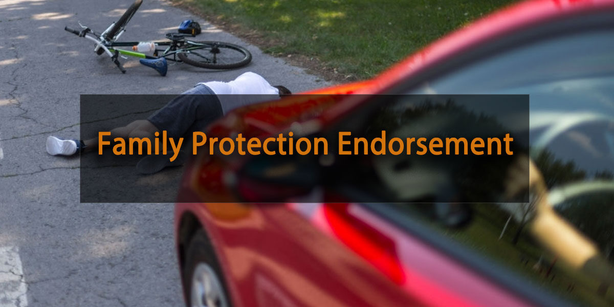 family protection endorsement